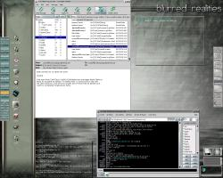 "Can you say Brushed ! GTK+ theme is BlueIce :) This is my first shot at 1600x1200 .. A nice friend bought me a 21"" monitor!!"